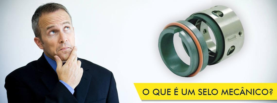 O QUE É UM SELO MECÂNICO? style=
